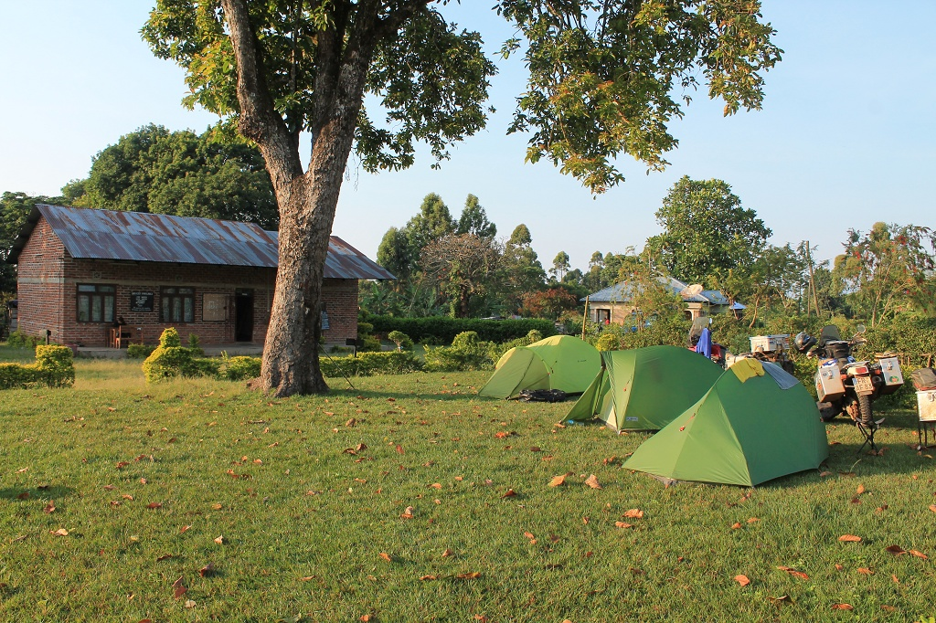 Bongo Camp