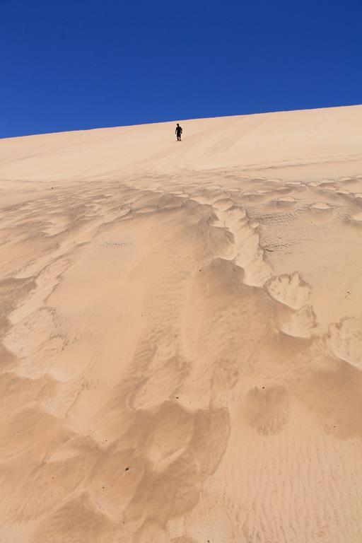 Daniel on the dune